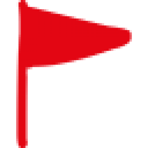 SuperYou Flag